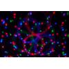 Jeux de lumière Afx Light COMBI FX1